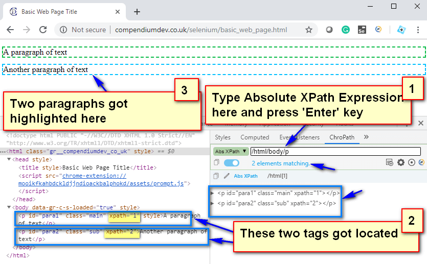 Absolute XPath - P Tags Located