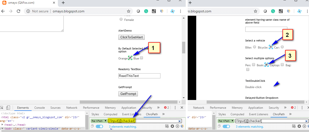 Relative XPath - Checked options