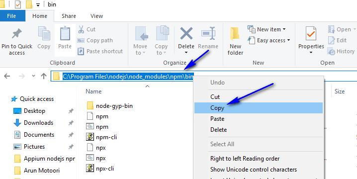 appium - nodejs path - npm bin folder path