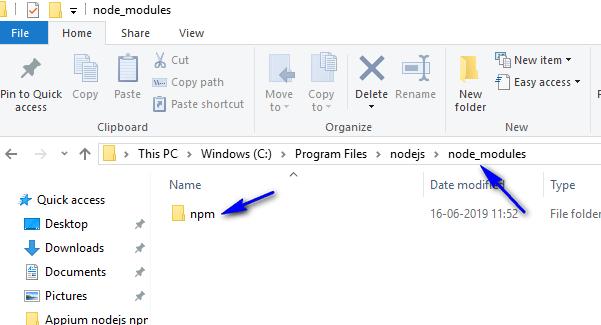 appium - nodejs path - npm folder
