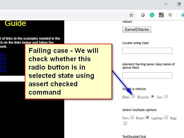 assert checked radio Selenium IDE - demo fail