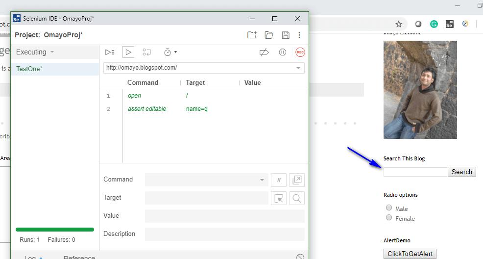 assert editable Selenium IDE - execute