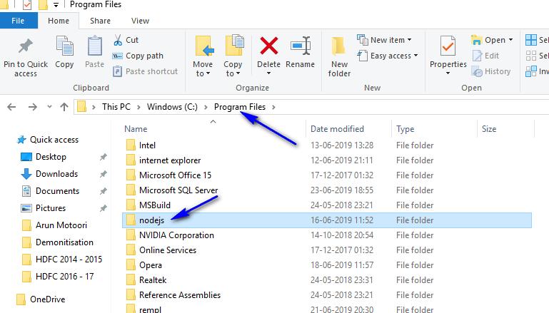node js and npm configuration - appium - nodejs folder