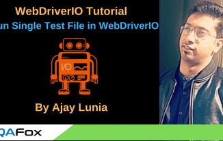 WebDriverIO – Run Single Test File