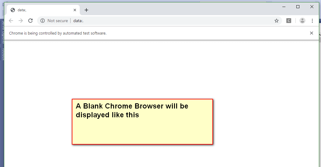 Selenium C# - Blank Google Chrome